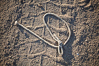 A left-behind piece of rope on a dirt road at Joshua Tree National Park in Southern California.