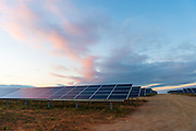 Solaire Direct Solar Park in the afternoon light