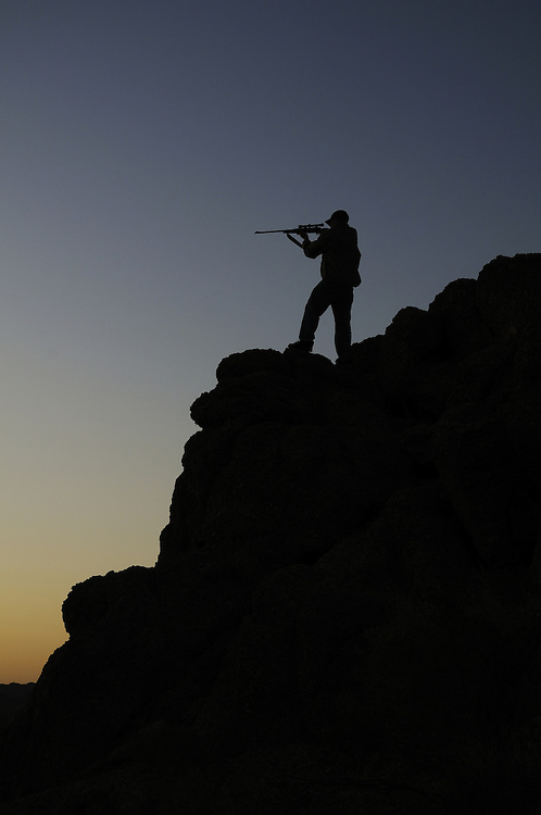 A Montana hunter keeps his sights on a mule deer from a rocky bluff just before sunrise.  RYAN BRENNECKE..406-546-3553