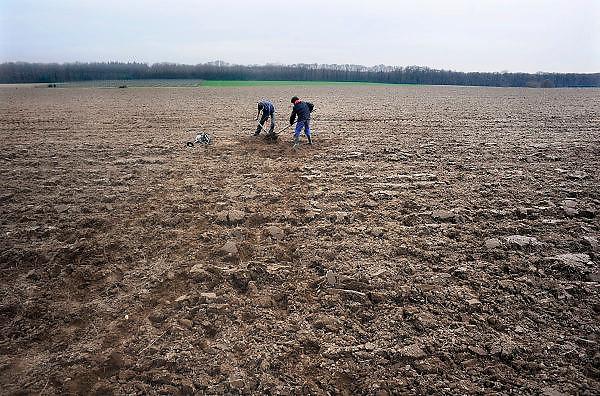 Nederland, Groesbeek, 7-4-2010Jongens, zonen van een boer, graven in een akker, op zoek naar munitie uit de tweede wereldoorlog. In dit gebied rond het dorp vonden in 1944 luchtlandingen plaats van de 82e airbourne divisie om de waalbrug te veroveren in het kader van operatie market garden.Foto: Flip Franssen/Hollandse Hoogte