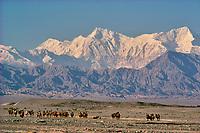 Chine, Province du Sinkiang (Xinjiang), Montagnes du Pamir dans la region de Tashkurgan // China, Sinkiang Province (Xinjiang), Pamir mountain near Tashkurgan