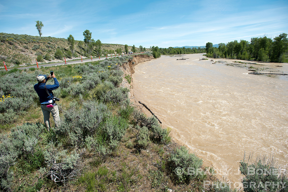 Ceejay Kilgore, a student conservation assistant with Grand Teton National Park, takes footage of the Gros Ventre River as it erodes the riverbank toward the Gros Ventre Road on Tuesday morning. Park officials closed the road indefinitely due to the structural threat to the road, but motorists can still access the town of Kelly and the surrounding area via Antelope Flats Road.