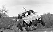 83 Parker Baja bugs
