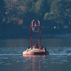 Navigational Buoy in Swanson Channel, Gulf Islands, British Columbia, Canada