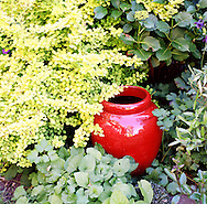 a red planter with green plants