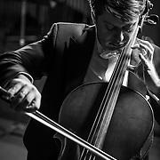APO Musicians Eliah