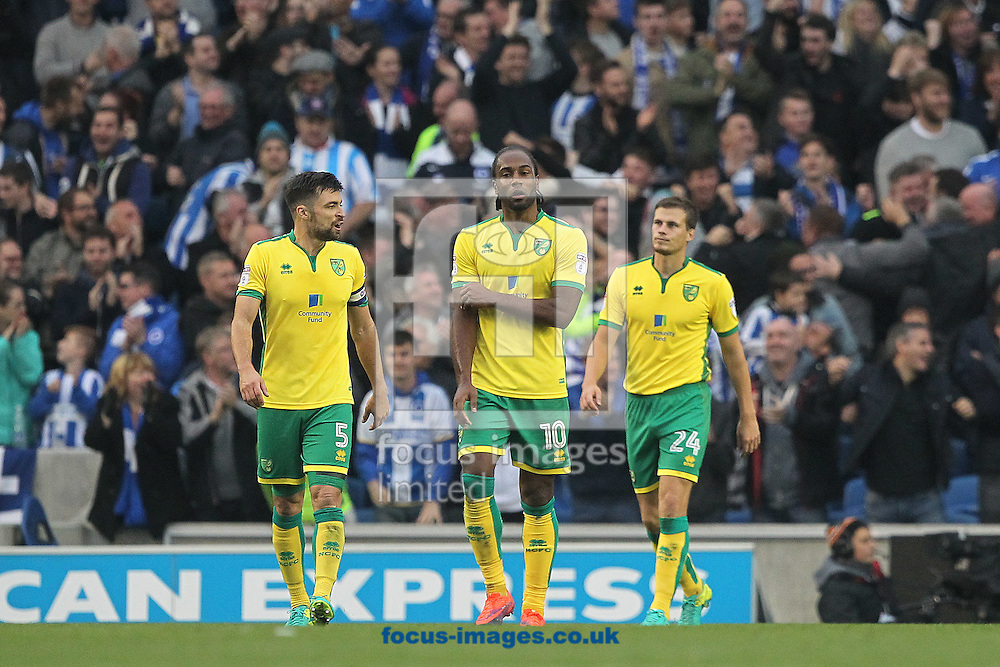The Norwich players look dejected after conceding their side&rsquo;s 3rd goal during the Sky Bet Championship match at the American Express Community Stadium, Brighton and Hove<br /> Picture by Paul Chesterton/Focus Images Ltd +44 7904 640267<br /> 29/10/2016