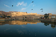 Amber Fort in Jiapur of Rajasthan, India