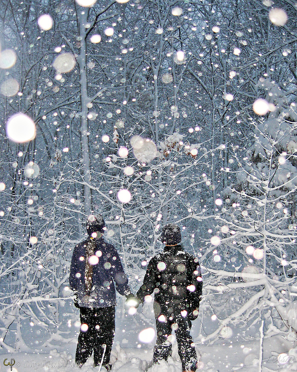 Falling snowflakes are illuminated by the camera flash as Ashlyn (age 12) and Bryce (age 10) pause on their evening winter walk through a snowstorm in McLean Woods, Belmont, MA.