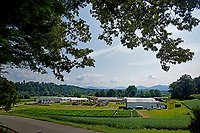 Mountain Horticultural Research and Extension Center in Henderson County.