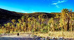 An oasis on the Tizi N'Tazezert trail<br /> <br /> (c) Andrew Wilson | Edinburgh Elite media