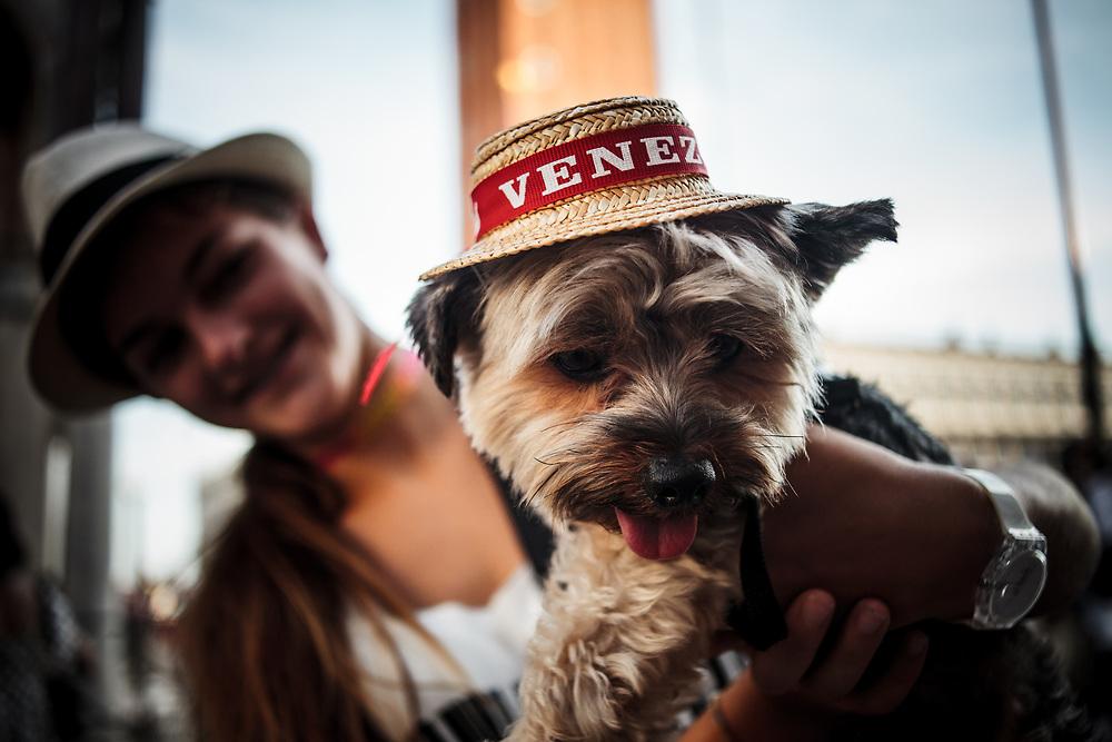 Souvenir: cappellino di paglia per cani. Piazza San Marco.