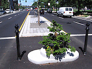 "Mill Ends Park: World's Smallest Park<br /> <br /> Mill Ends Park in Portland, the United States, is only two feet in diameter and is really just a flower pot, but don't say that aloud, especially in front of Portlandians. Since the last 40-odd years, the locals have been celebrating this tiny hole of earth as the world's smallest park, and they have a certificate from the Guinness Book of Records to prove.<br /> The site that would become the Mill Ends Park was originally scheduled for a light pole. When the pole failed to appear and weeds sprouted in the opening, Dick Fagan, a columnist for the Oregon Journal, decided to take matters into his own hands and planted flowers in the hole. Fagan's office in the Journal building overlooked the median in the middle of the busy thoroughfare that ran in front of the building. Fagan wrote a popular column called Mill Ends (the rough, irregular pieces of lumber left over at lumber mills), and he started using this column to describe the park and the various ""events"" that occurred there. It was Fagan who started calling the space as the ""World's Smallest Park."" The park was dedicated, two years later, on St. Patrick's Day in 1948.<br /> Fagan continued to write whimsical stories about the park and the lives of its alleged residents – fairies called leprechaun, that he claimed only he can see. He told a story about how he looked out the window and spotted a leprechaun digging in the hole. He ran down and grabbed the leprechaun, which meant that he had earned a wish. Fagan wished for a park of his own, but since he had not specified the size of the park in his wish, the leprechaun gave him the hole. Fagan even named the head leprechaun, Patrick O'Toole.<br /> Fagan died of cancer in 1969, but the park lives on, cared for by others. Mill Ends officially became a city park on St. Patrick's Day in 1976, and the park continues to be the site of St. Patrick's Day festivities.<br /> Over the years, contributions have been made to the park, such as the small s"