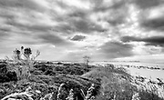 East Ocean Isle Beach view looking towards Holden Beach featuring natural barrier island vegetation.