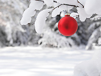 Red Christmas ornament outdoors on a snow covered tree closeup artistic holiday background winter nature scenic