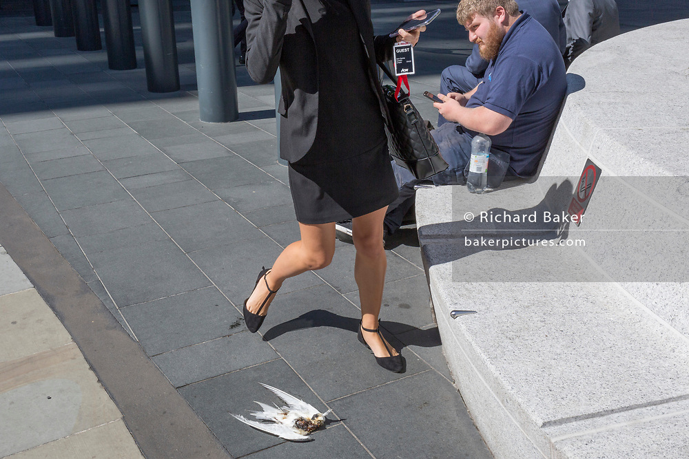 Lunchtime City workers avoid a dead, headless bird on the ground at Leadenhall in the City of London, (aka The Square Mile) the capital's financial district, on 3rd September 2019, in London, England.