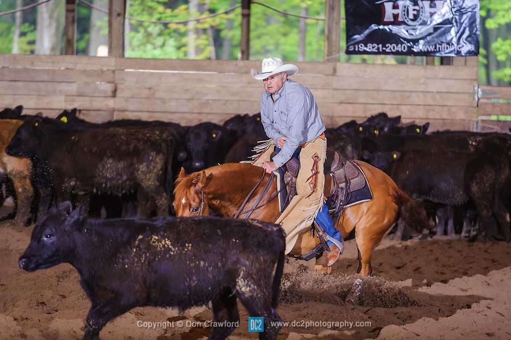 May 21, 2017 - Minshall Farm Cutting 4, held at Minshall Farms, Hillsburgh Ontario. The event was put on by the Ontario Cutting Horse Association. Riding in the 2,000 Limited Rider Class is Rheal Bourgeois on Smart N Prime owned by Lisa MInshall.