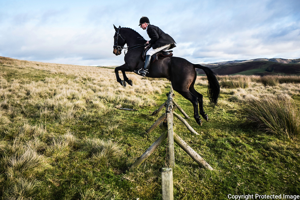 James Vestey riding with the Jedforest Hunt, jumps a fence in the Border hills.