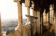 France. Paris. elevated view on the Sacre Coeur. View on Paris from the Sacre Coeur dome.