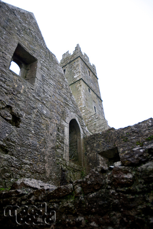 Looking up to the tower of Quin Abbey, Ireland