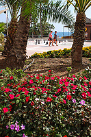 Estepona, Malaga Province, Spain, promenade_201810092532<br />