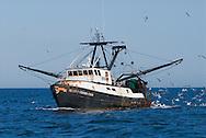 Fishing Boat, New York, Southampton