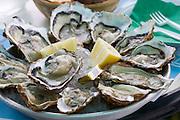 Etang de Diane. Oysters fresh from the sea.