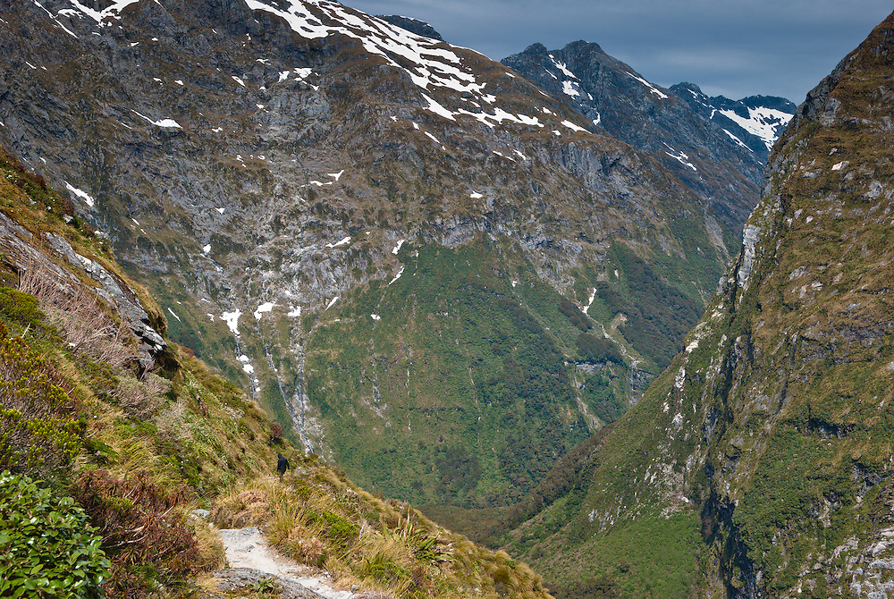 A walker descends the Milford Track into Clinton Canyon surrounded by tussocks and alpine flora, towards the steep slopes of Mount Balloon