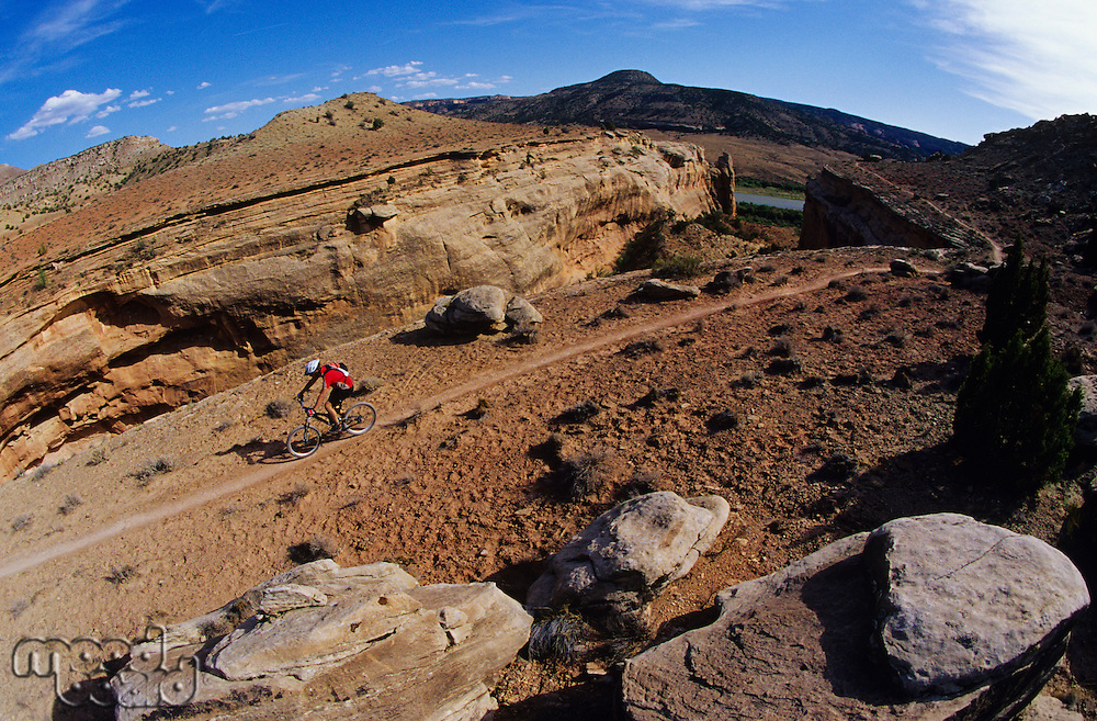 Biker riding on mountain trail