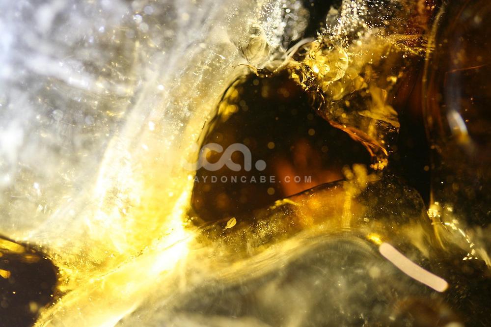 Macro Shots from jaydon cabe Photography