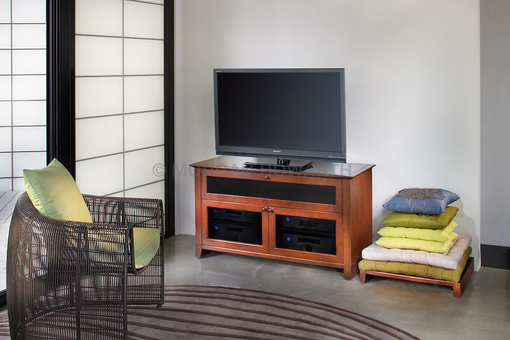 Family room TV room