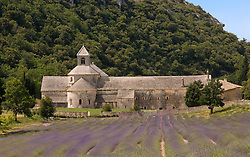 The Abbey of Senanque is a working 12th century abbey, tucked into an isolated valley north of Gordes in the Vaucluse region.