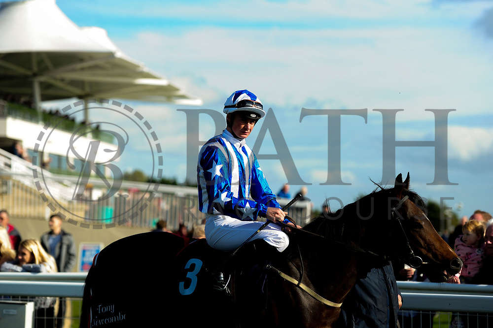 Wrath of Hector ridden by E J Walsh and trained by A G Newcombe - Ryan Hiscott/JMP - 16/10/2019 - PR - Bath Racecourse - Bath, England - Race Meeting at Bath Racecourse