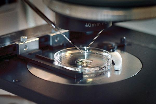 Nederland, Nijmegen, 14-11-2007Schaaltje onder een microscoop waar een eicel gefixeerd wordt om daarna door de laborant kunstmatig bevrucht te worden. In vitro fertilisatie.Foto: Flip Franssen
