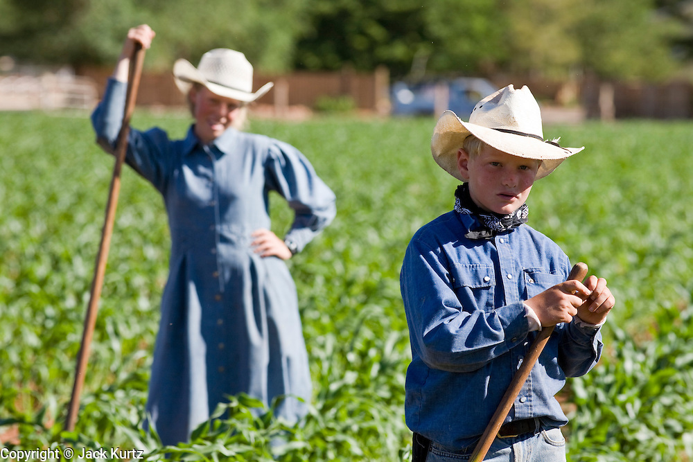 "June 16, 2008 -- COLORADO CITY, AZ: Members of the Jessop family, a polygamous family and members of the FLDS in Colorado City, AZ, weed the community corn field. The family grows about 30 percent of the food they consume and buy the rest at the town mercantile store. Colorado City and neighboring town of Hildale, UT, are home to the Fundamentalist Church of Jesus Christ of Latter Day Saints (FLDS) which split from the mainstream Church of Jesus Christ of Latter Day Saints (Mormons) after the Mormons banned plural marriage (polygamy) in 1890 so that Utah could gain statehood into the United States. The FLDS Prophet (leader), Warren Jeffs, has been convicted in Utah of ""rape as an accomplice"" for arranging the marriage of teenage girl to her cousin and is currently on trial for similar, those less serious, charges in Arizona. After Texas child protection authorities raided the Yearning for Zion Ranch, (the FLDS compound in Eldorado, TX) many members of the FLDS community in Colorado City/Hildale fear either Arizona or Utah authorities could raid their homes, in the same way. Older members of the community still remember the Short Creek Raid of 1953 when Arizona authorities using National Guard troops, raided the community arresting the men and placing women and children in ""protective"" custody. After two years in foster care, the women and children returned to their homes. After the raid, the FLDS Church eliminated any connection to the ""Short Creek raid"" by renaming their town Colorado City in Arizona and Hildale in Utah. The Jessops are a polygamous family and members of the FLDS.     Photo by Jack Kurtz"