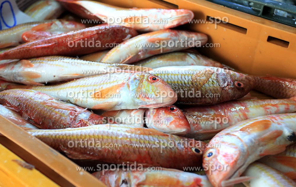 09.10.2015, Sibenik, CRO, Fischmarkt in Sibenik, im Bild das reichhaltige Angebot der verschiedenen Arten von Fisch auf dem Fischmarkt der Stadt // the rich offer of various types of fish on the city's fish market Sibenik in, Croatia on 2015/10/09. EXPA Pictures &copy; 2015, PhotoCredit: EXPA/ Pixsell/ Dusko Jaramaz<br /> <br /> *****ATTENTION - for AUT, SLO, SUI, SWE, ITA, FRA only*****