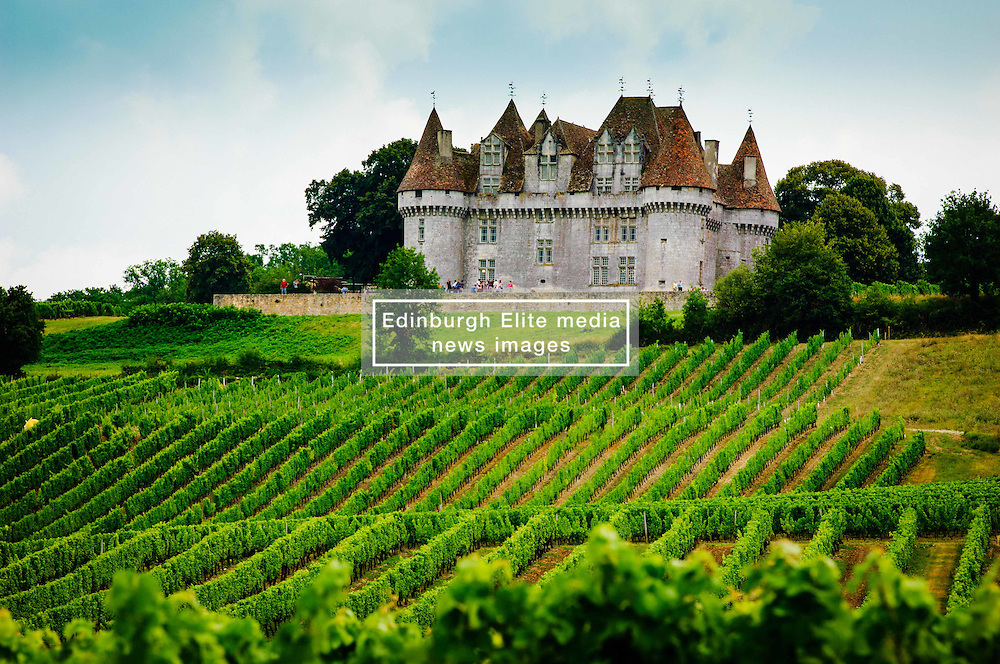 Chateau overlooking vineyards on the Cotes de Duras, Lot et Garonne, Aquitaine, France<br /> <br /> (c) Andrew Wilson | Edinburgh Elite media
