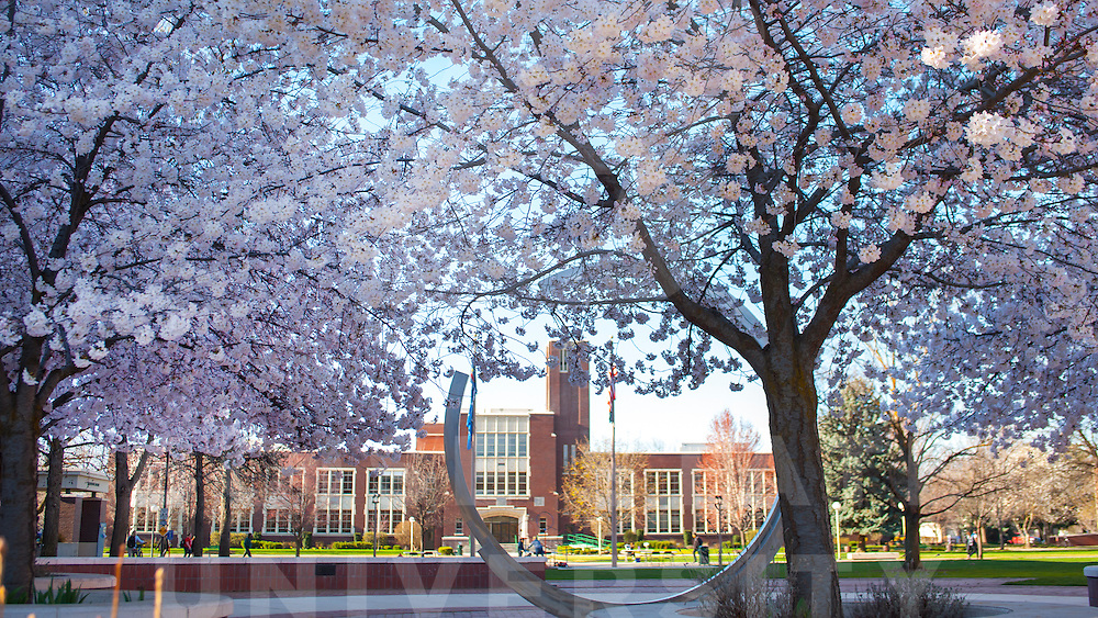 Spring Campus Scenes, First Day of Spring, Carrie Quinney photo