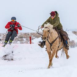 Wisdom Winterfest Skijoring