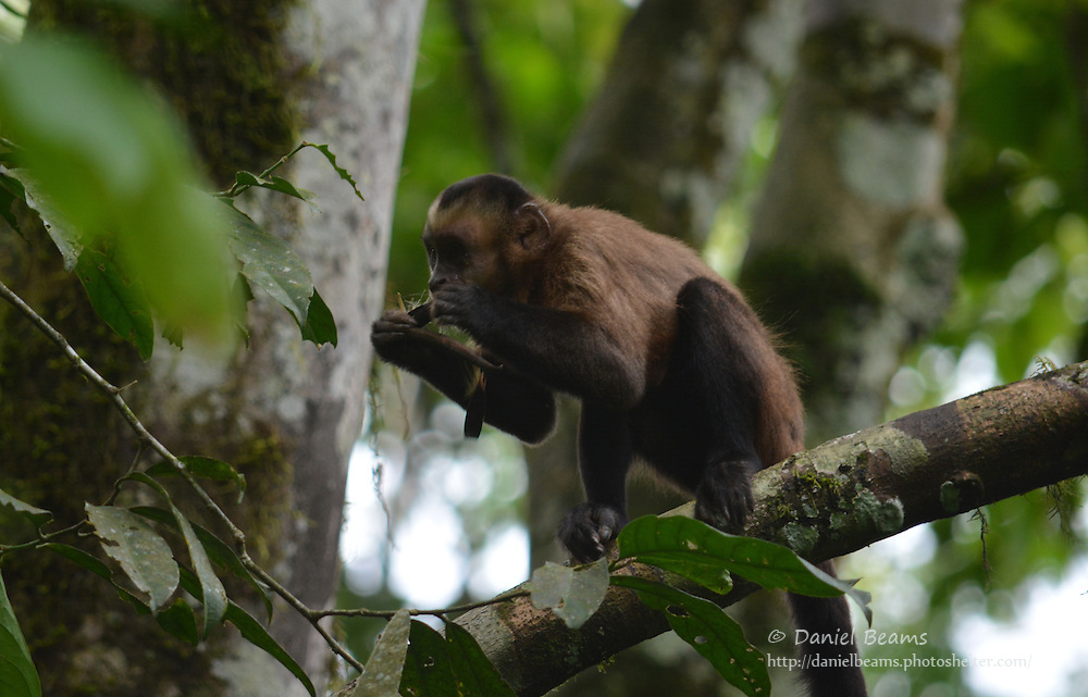 Inti Yara Wassi wildlife refuge