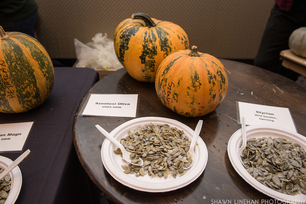 WINTER SQUASH, Cucurbita spp. Researcher: Alex Stone, Oregon State University<br />Chef: Timothy Wastell<br />Dish: Hull-less Pumpkin Seed Oil Ice Cream, Caramelized Pumpkin Juice &amp; Crushed Seeds
