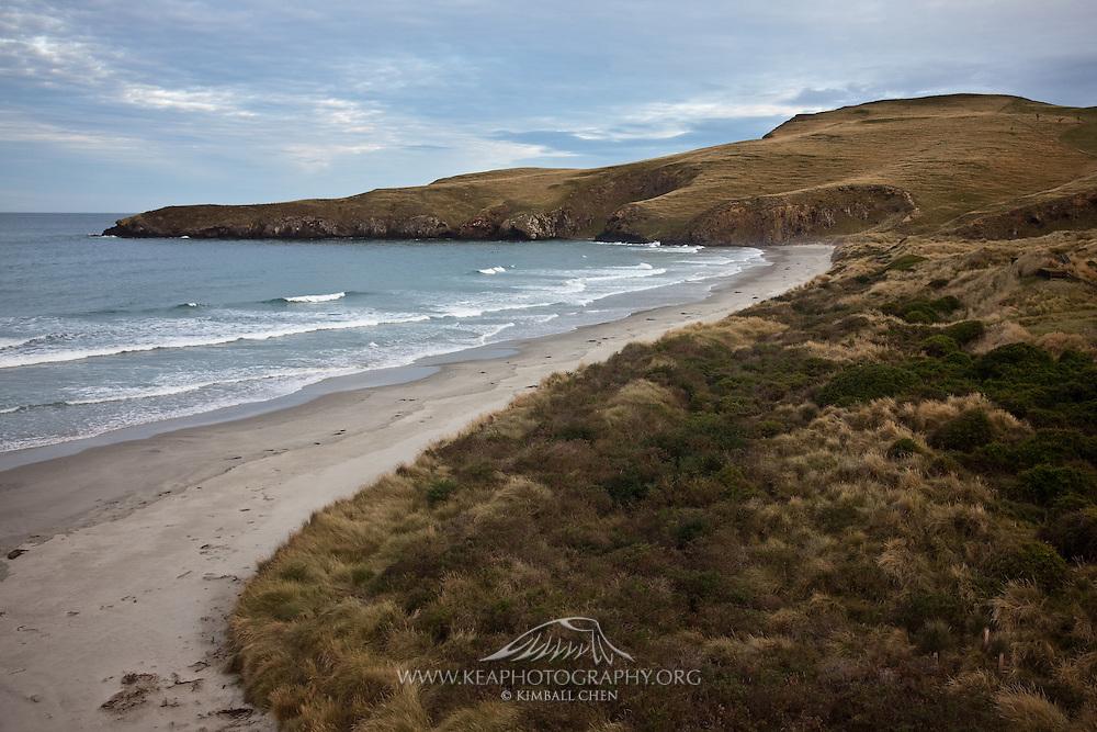 Pipikaretu Beach, Otago Peninsula, New Zealand
