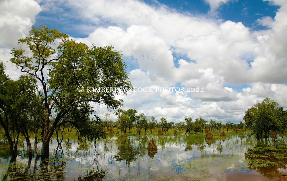 Clouds and termite mounds reflected in the still water after a west Kimberley wet season storm near Willare.