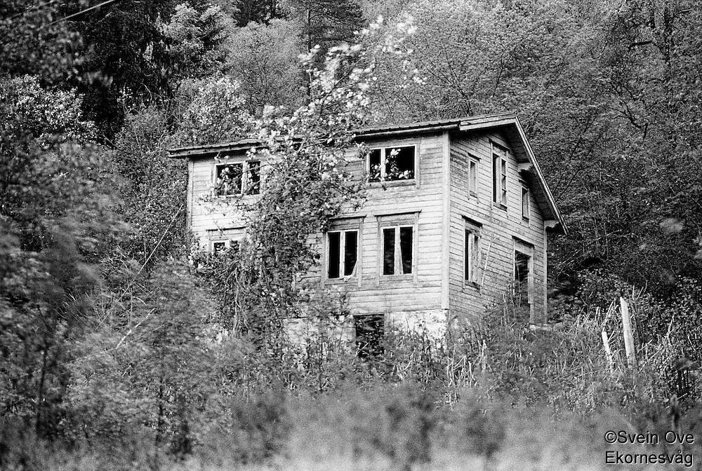 Et forlatt hus i skogen.<br /> Foto: Svein Ove Ekornesvåg