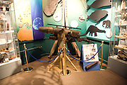 Inside the Maritime museum, Hull, Yorkshire, England whaling cannon display