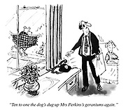 """Ten to one the dog's dug up Mrs Perkins's geraniums again."""