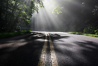 Light rays catch moisture-laden air on a summer morning along the Blue Ridge Parkway in Western North Carolina.  I've come to know a number of spots along this beautiful road where this scene is pretty regular, given the correct atmospheric conditions.