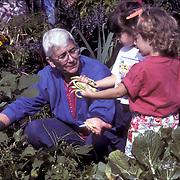 RSVP : Retired Senior Volunteer Program, New York Botanical Garden, docent-volunteer gardening as small child look on and help.nal, children , gardening