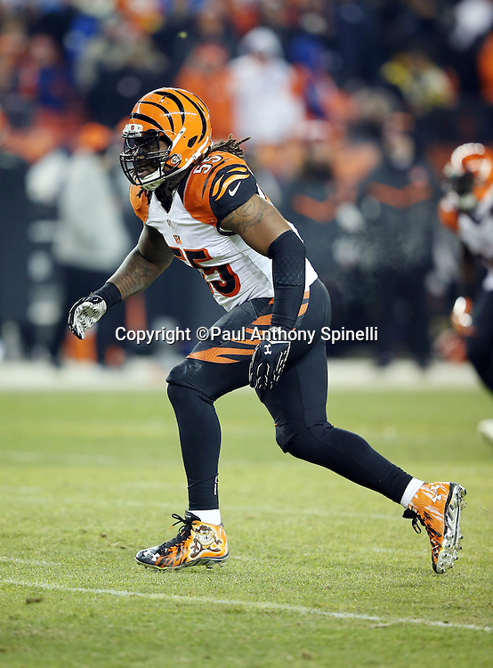 Cincinnati Bengals outside linebacker Vontaze Burfict (55) chases the action during the 2015 NFL week 16 regular season football game against the Denver Broncos on Monday, Dec. 28, 2015 in Denver. The Broncos won the game in overtime 20-17. (©Paul Anthony Spinelli)