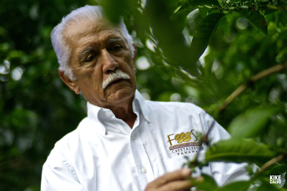Portrait of Don Francisco Serracin, founder of Don Pachi Estate.